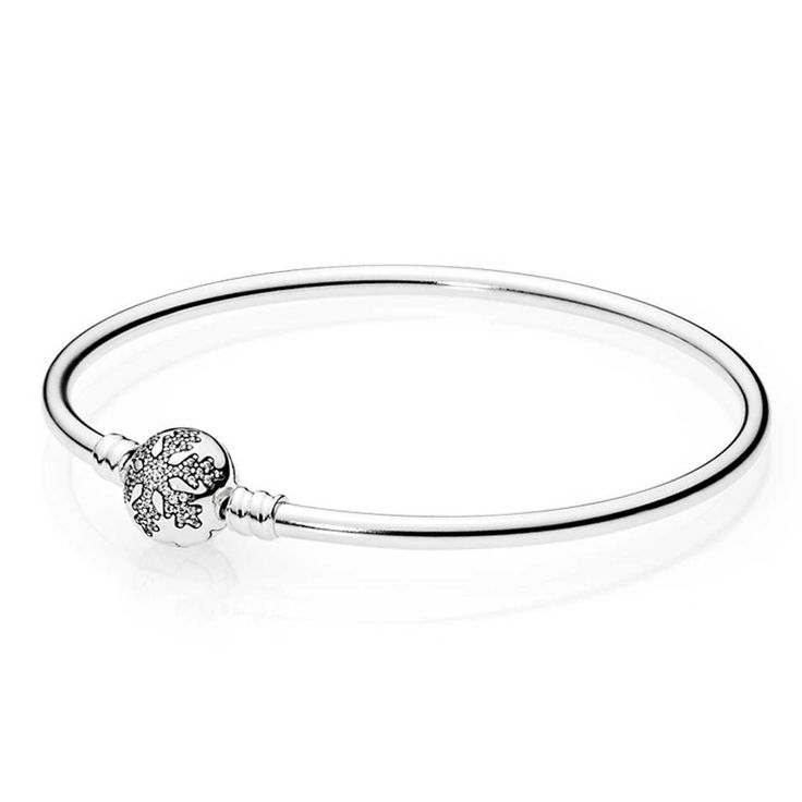 6b865acf6fefa91d88936c14f264481f--pandora-bangle-pandora-charms